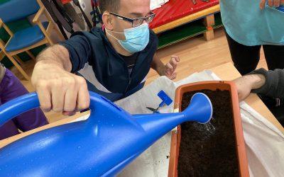 El taller de jardinería de ASPACE Cáceres va dando sus frutos